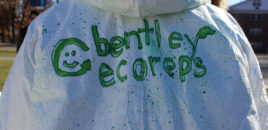 Princeton Review Ranks Bentley Among Top Green Colleges in America